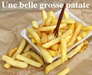 Dictionnaire québécois : une belle grosse patate