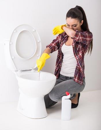 Je déteste laver la bolle des toilettes.
