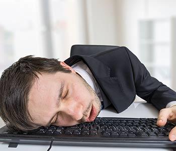 Jule dort comme une buche sur son clavier d'ordinateur.