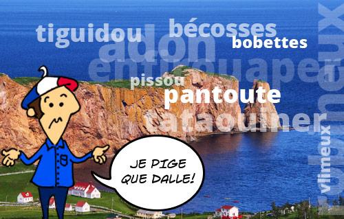 Une illustration d'un Français devant le rocher Percé admet qu'il pige que dalle dans un montage de dix mots québécois presque impossibles à comprendre.