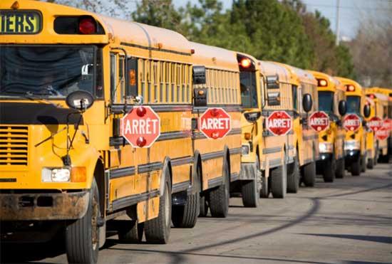 Une file d'autobus jaunes (autobus pour écoliers)